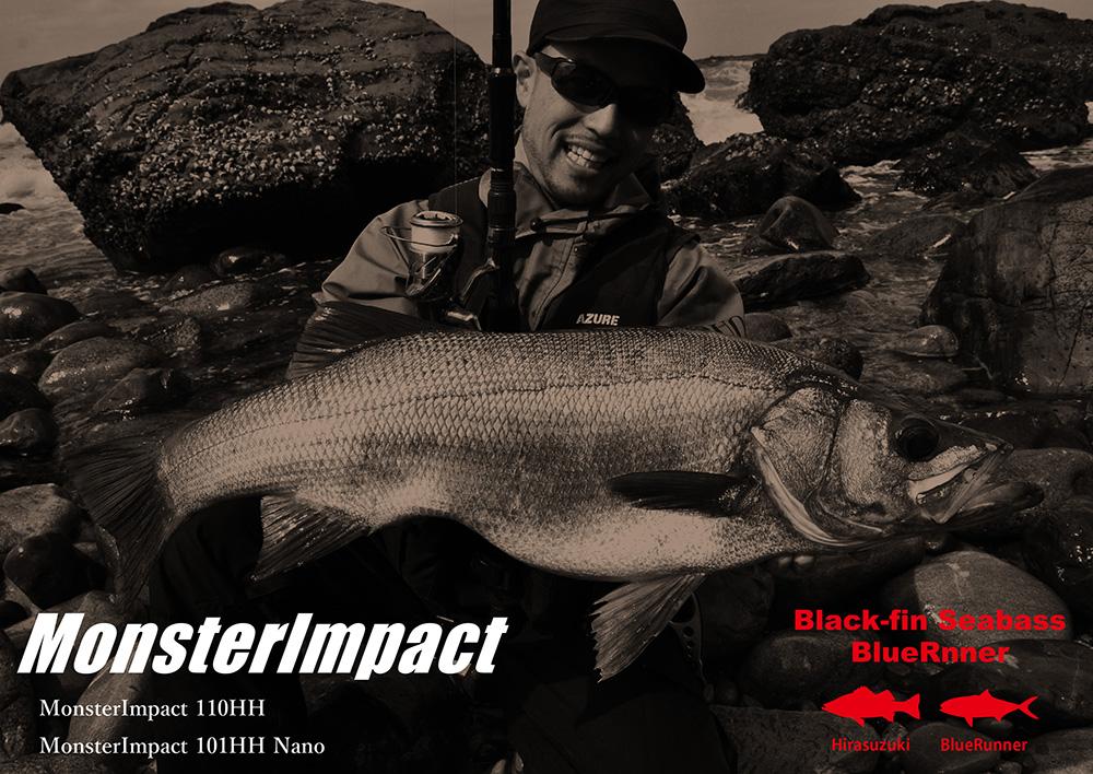 MonsterImpact / Black-fin Seabass