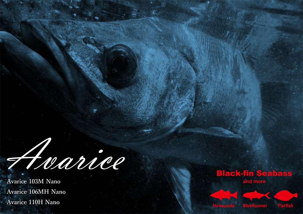 Avarice / Black fin Seabass
