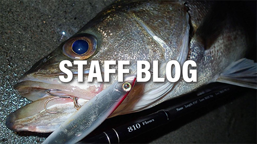 【釣行レポート】SilverStream 810Flows 浜名湖シーバス