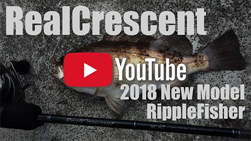 RealCrescent /2018 New-Model